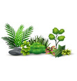 little green plant botanical landscape vector image