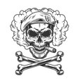 navy seal skull wearing beret and smoking cigar vector image vector image