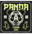 panda china zoo colored decorative vector image vector image