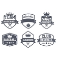 Set of Vintage Baseball Club Badge and Label vector image vector image