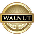 walnut gold icon vector image vector image