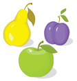 Autumn collection of ripe fruit vector image vector image