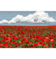 bright poppy field with clouds and blue sky vector image
