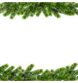 christmas background with green pine branches vector image vector image