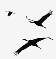 crane pack vector image vector image