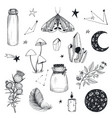 collection mystical magic boho elements vector image vector image