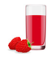 juice from ripe raspberry vector image vector image