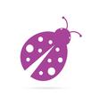ladybug violet vector image vector image