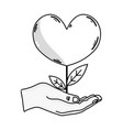 line hand with beauty heart plant with leaves vector image vector image