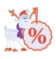 Little Toy Horse with Big Sale Discount Label vector image vector image