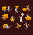 mouse and rat with cheese cartoon characters vector image