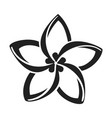 plumeria flower icon simple style vector image vector image