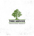 professional arborist tree care service organic vector image vector image