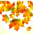 Autumn falling down foliage background vector image vector image
