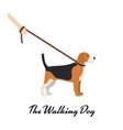 Beagle Dog with a leash - color serious dog vector image vector image