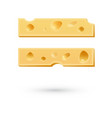 Cheese equal mark Symbol isolated on white vector image vector image