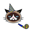 grumpy cat in party hat with party horn blower vector image vector image