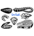 mussels and octopus oyster and salmon steak vector image vector image