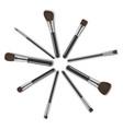 realistic detailed 3d makeup tools circle set vector image vector image