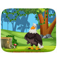 an eagle in nature background vector image vector image
