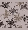 badian seamless pattern vector image