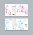 brochure with molecule structure vector image