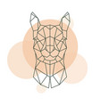 geometric head of alpaca wild animal vector image vector image