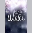 handwritten lettering hello winter inscription on vector image vector image