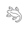 lizard line icon concept lizard linear vector image