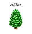 realistic pine cone christmas new year vector image vector image