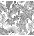 seamless monochrome pattern with tropical flowers vector image vector image