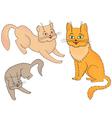 Three funny cartoon cats vector image vector image