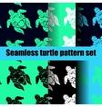 turtle pattern set vector image vector image