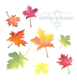 Autumn maple leaves Watercolor imitation in vector image vector image