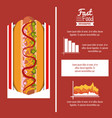 fast food infographic design vector image