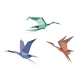 Herons cranes and storks vector image