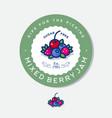 label for jam mixed berries vector image