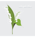 lily valley background vector image