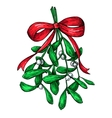 Mistletoe with red bow Christmas decor plant