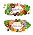 natural exotic fruits vegetarian food icons vector image vector image