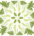 round pattern with green leaves on a white backgro vector image