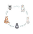 round shape frame with cute baby fox bear owl vector image