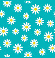 white daisy chamomile icon cute flower plant vector image vector image