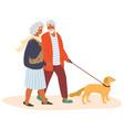 elderly couple walking with pet dog flat vector image vector image