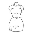 female bodycon dress on a mannequin vector image vector image
