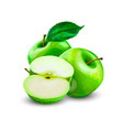 green apples slice vector image vector image