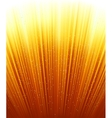Magic stars on rays of red golden light vector image