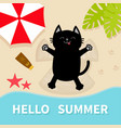 black cat sunbathing on beach making sand vector image