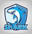 cartoon shark with blue shield on gray vector image vector image