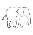 elephant wild animal safari african vector image vector image
